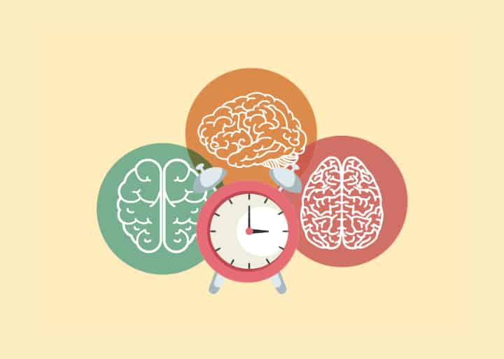 3 brains and an alarm clock in the middle - critical period