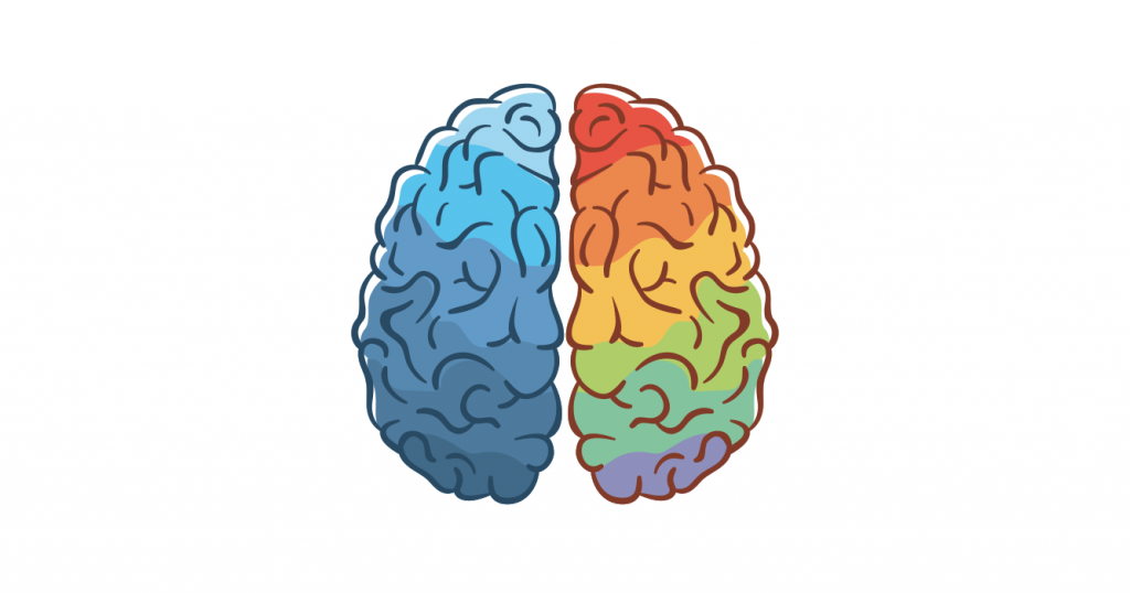 a colored illustration of a brain, shades of blue on the left brain and rainbow color on the right brain, can it be an ADHD brain