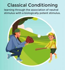 Dad and boy wear baseball caps, and play baseball in the park - classical conditioning