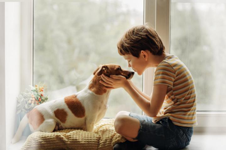 dog kisses dog