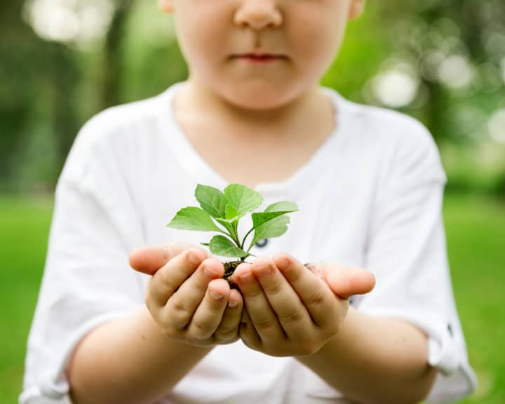 child holding small plant - 4 parenting styles