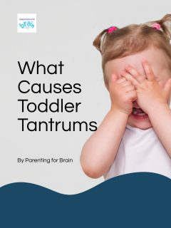 What causes toddler tantrums by Parenting for Brain