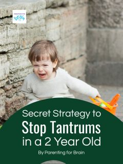 toddler crying and kneeling on the group - Secret strategy to stop tantrums in a 2 year old