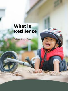 what is resilience story